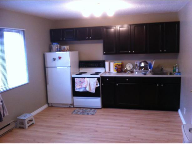 1 bedroom apartment for rent available august 1 south