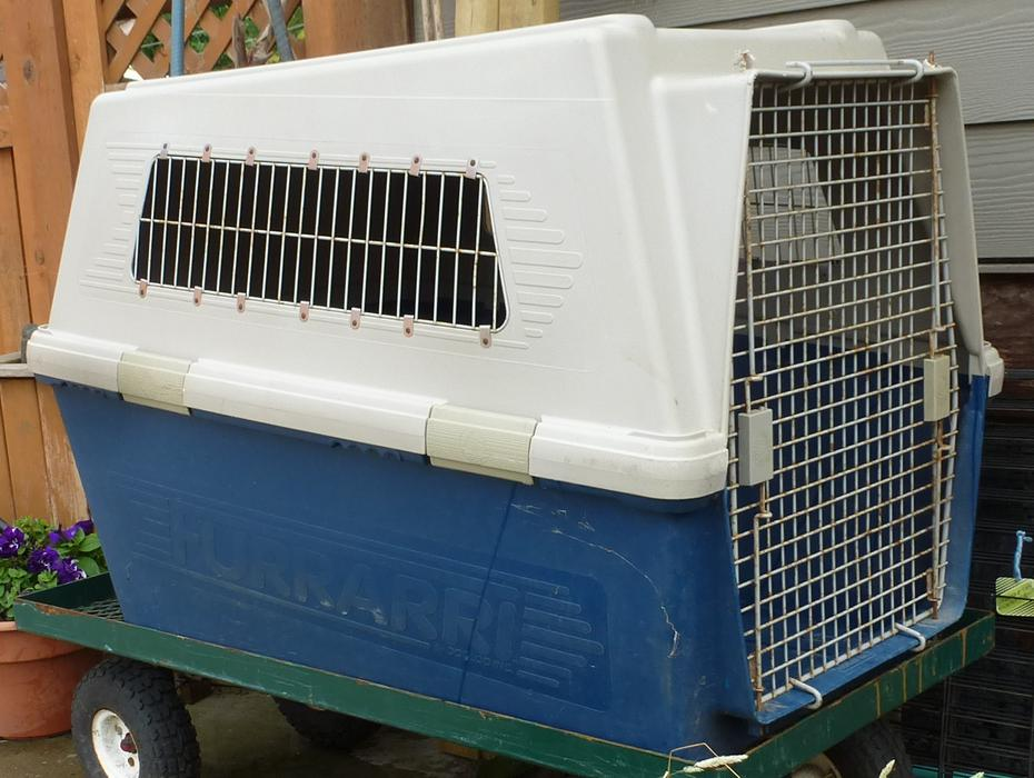 Used Dog Crates For Sale Vancouver Bc