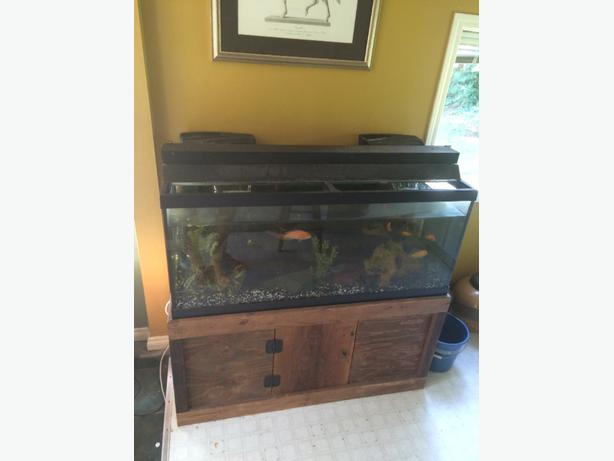 90 gallon fish tank with everything you need outside for What do you need for a fish tank