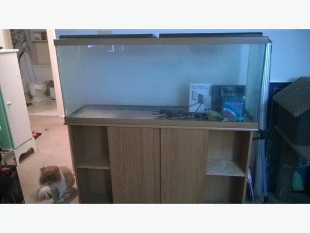 55 gallon fish tank stand heater filter and extra