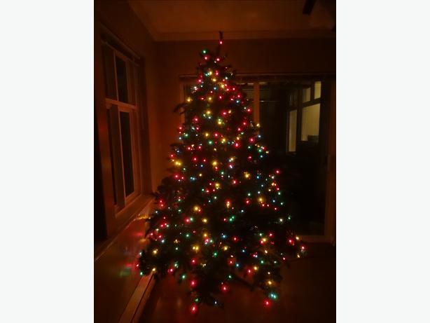 Noma Pre Lit 7 1 2 Foot Tall Chippewa Fir Christmas Tree