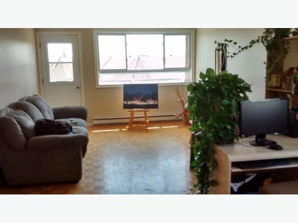 Room for rent chambre a louer aylmer sector quebec for Chambre a louer a ottawa