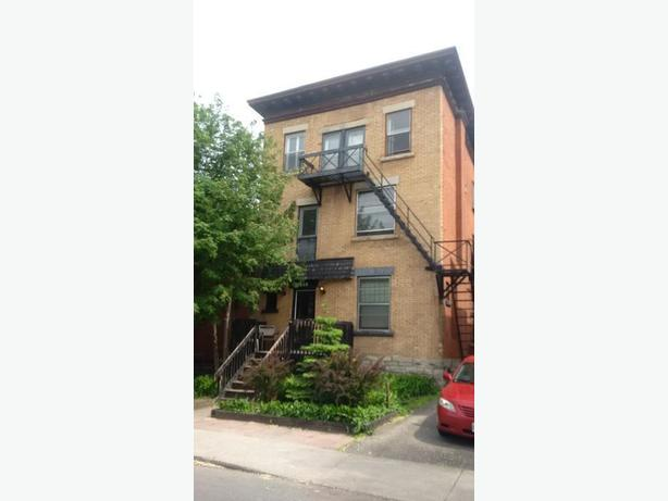 1 Bedroom Sandy Hill Apartment - Jan. 1st (508 Besserer St)