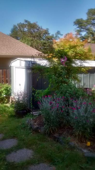 Free large metal garden shed saanich victoria for Garden shed victoria