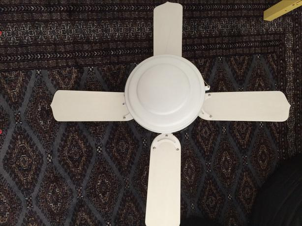 White Ceiling Fan With Light Victoria City Victoria