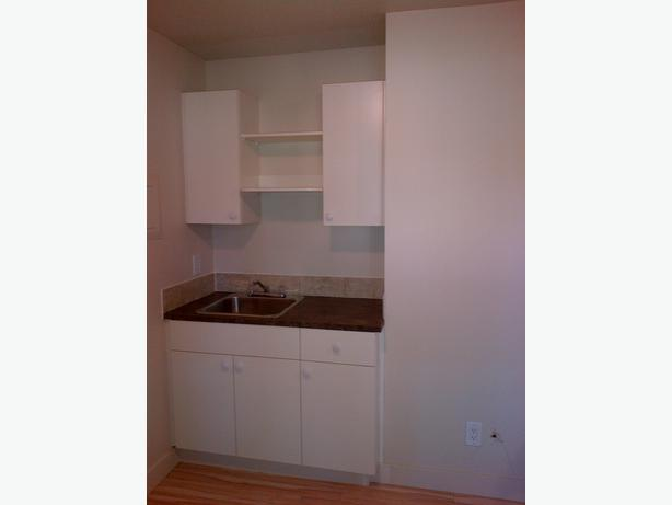 Terrific 1 bed w river view on deck parksville nanaimo for Bathroom cabinets nanaimo