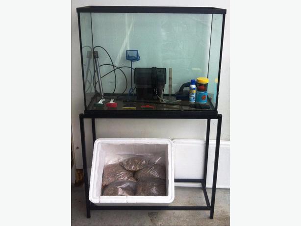 100 gallon fish tank jug the fish tank is a rubbermaid for 100 gallon fish tanks