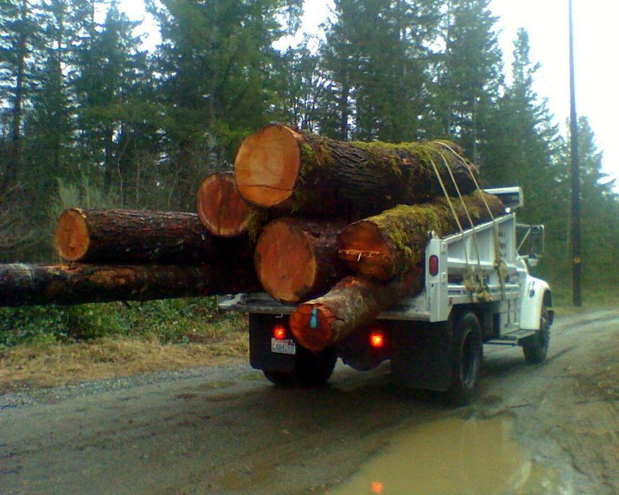 For sale firewood log loads selling wood heat