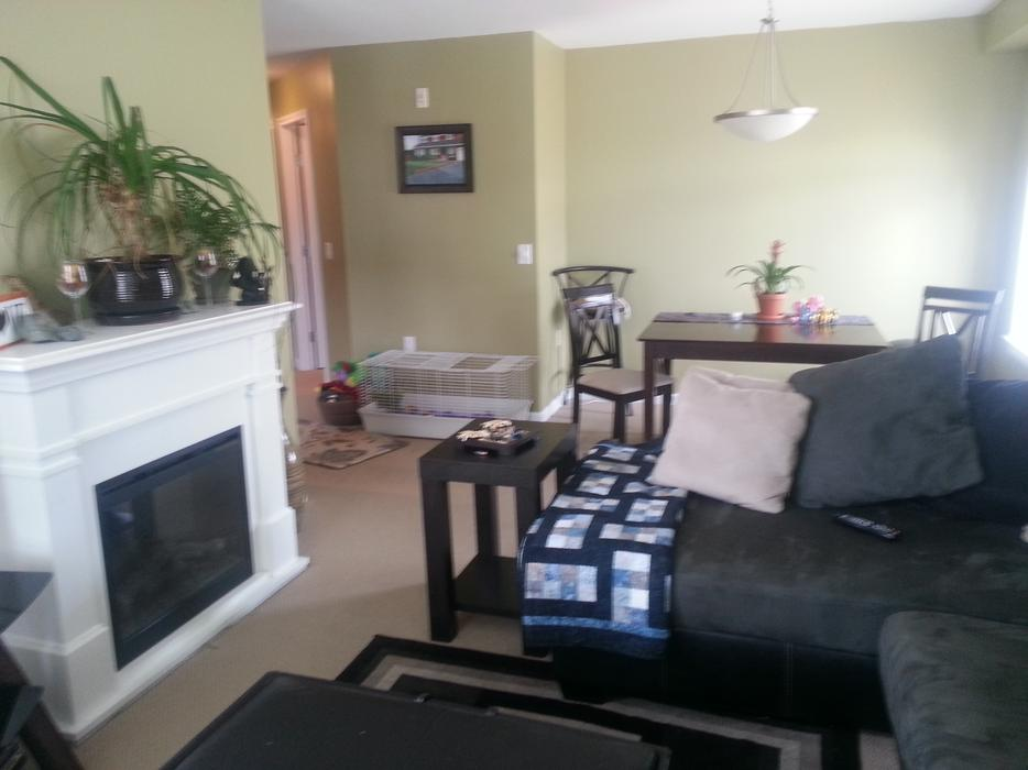 Large 1000ft2 2 Bedroom 2 Bathroom Condo For Rent West