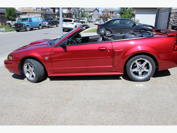 2004 ford mustang gt 40th anniversary editon convertible. Black Bedroom Furniture Sets. Home Design Ideas