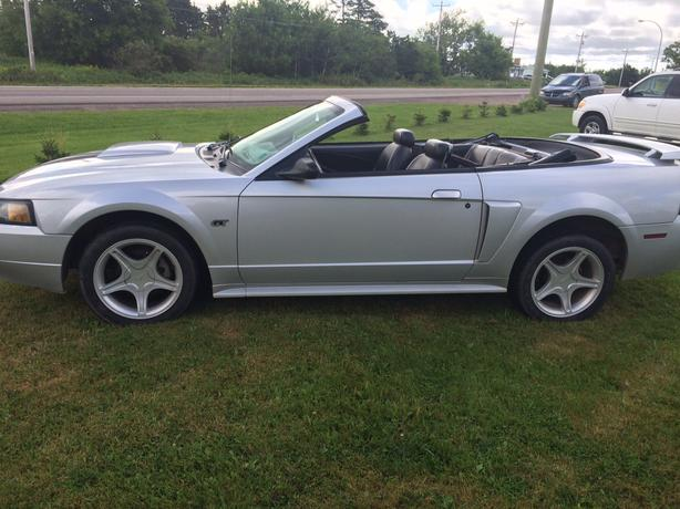 2002 Ford Mustang Gt Convertible Prince County Pei