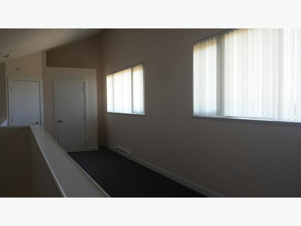 2 bedroom 1bathroom loft apartment pet friendly cable included victoria city victoria for 2 bedroom pet friendly apartments