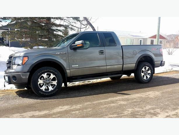 ford f 150 fx4 4x4 truck outside winnipeg winnipeg mobile. Black Bedroom Furniture Sets. Home Design Ideas