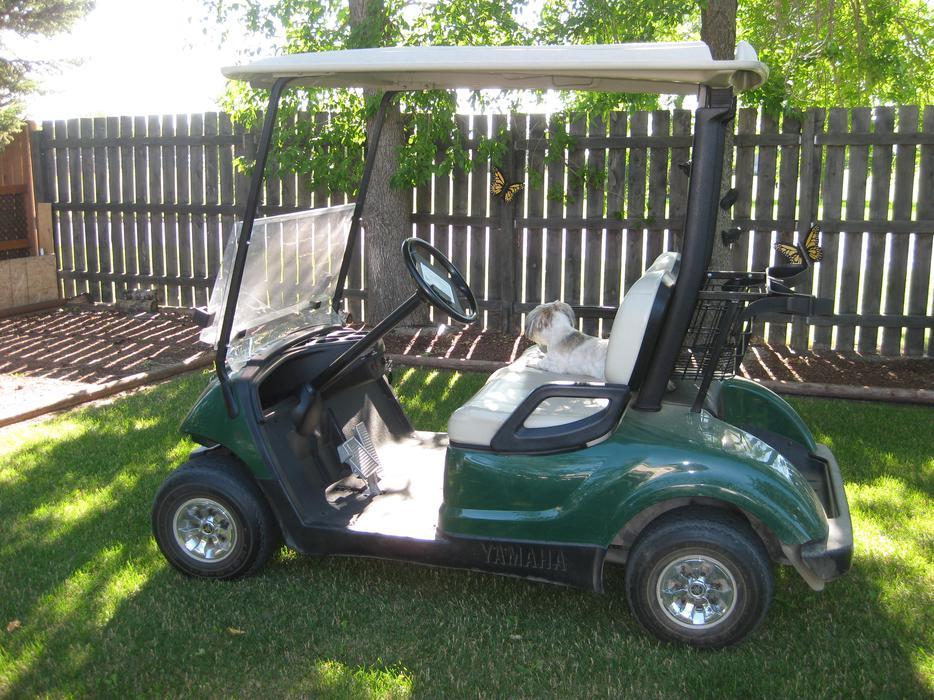 2009 yamaha gas golf cart yorkton regina mobile for Yamaha golf cart repair near me