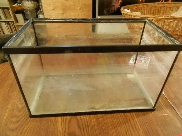 10 gallon aquariums central regina regina for Aquariums for sale near me