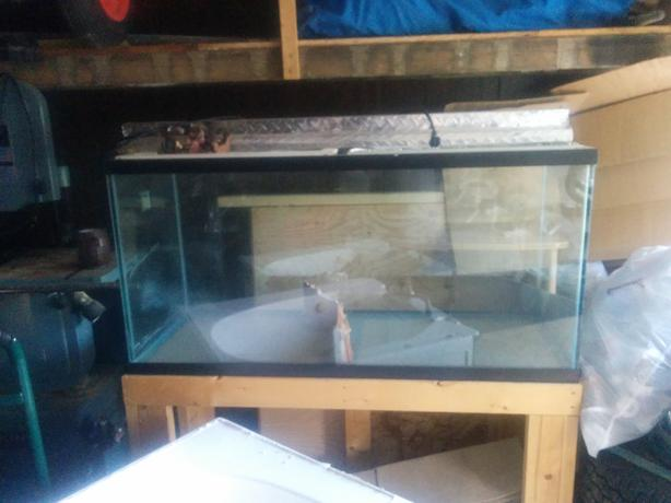 90 gallon fish tank north regina regina for 90 gallon fish tank stand