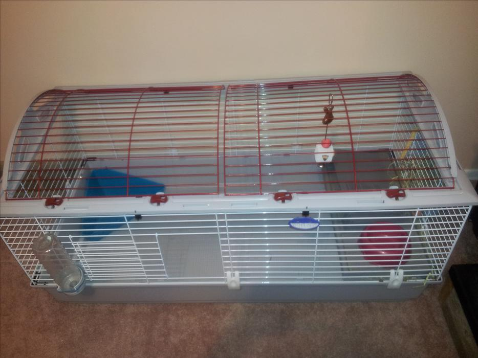 Barley used extra large rabbit cage food and chewing toys for Extra large rabbit cage