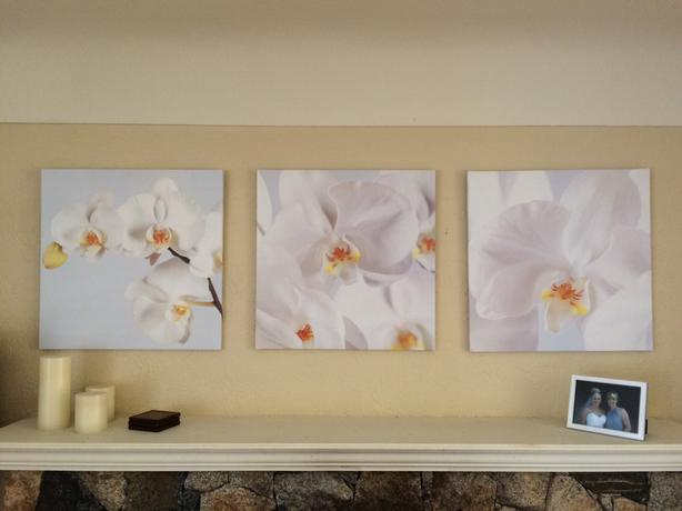 Ikea Orchid Pictures On Canvas Set Of 3 Saanich Victoria