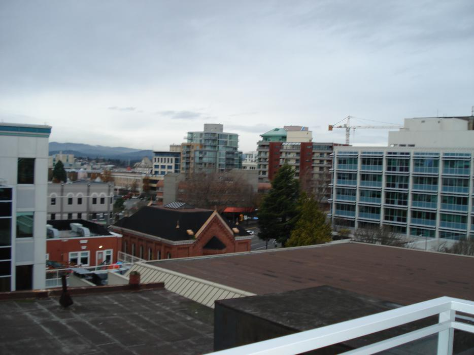 Luxury cozy new 7th floor 1br condo downtown for rent for 7 summerland terrace