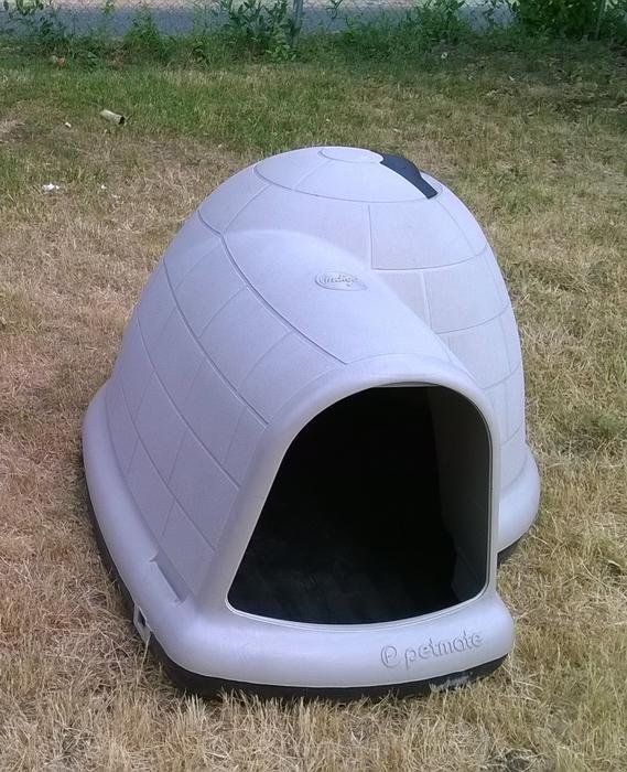 Used Large Igloo Dog House