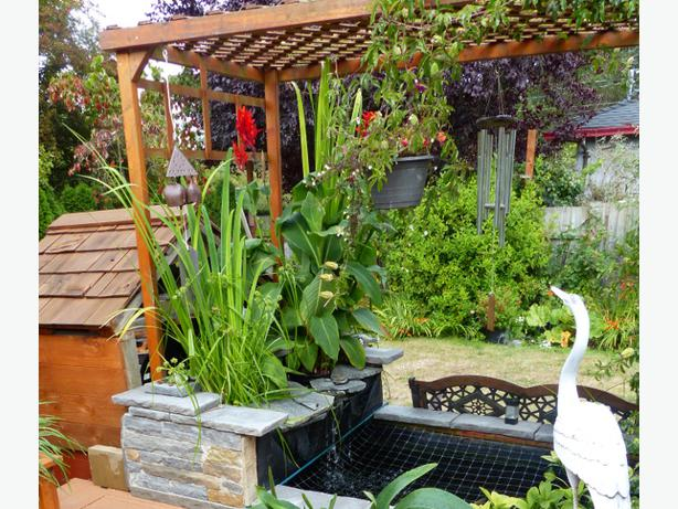 garden and aquatic pond hydroponic plants saanich victoria