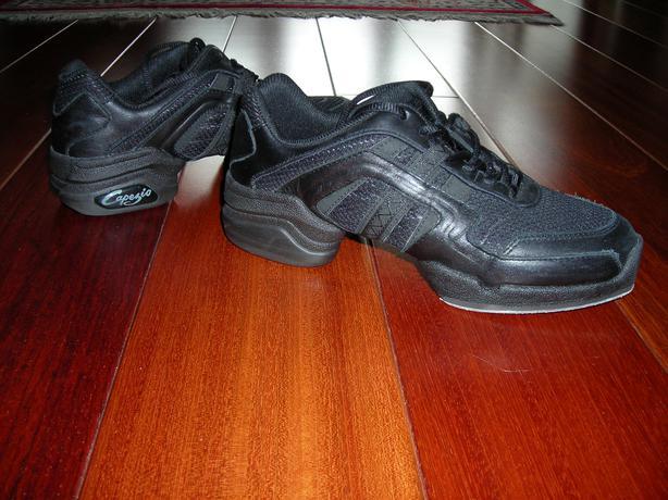 Ballroom Dance Shoes Windsor Ontario
