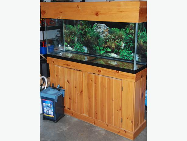 55 gallon fish tank outside victoria victoria for 55 gal fish tank stand