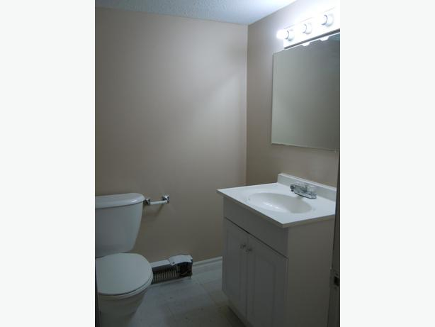 Clean Bright 2 Bedroom Apt Near Univ Of Ottawa Central Ottawa Inside Greenbelt Ottawa