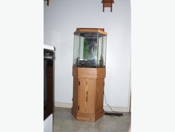 20 gallon aquarium used 20 gallon fancy guppy for Fish tank stand 20 gallon