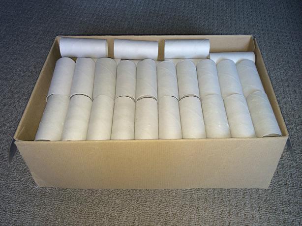 100 empty toilet paper rolls cardboard tubes craft for Craft ideas using empty toilet paper rolls