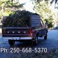 Yard Waste Removal - $65.00 Flat Rate - Nanaimo Only