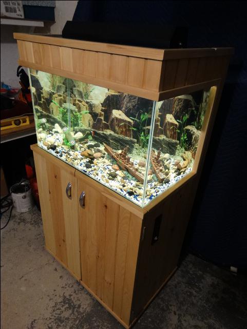 35 gallon aquarium stand filter great for advanced for 35 gallon fish tank