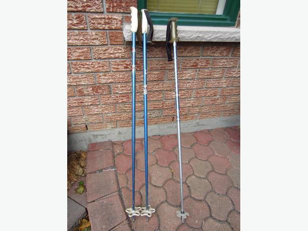 Ramy and Rossignol Ski Poles
