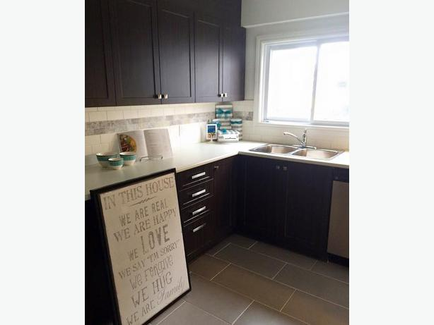 Where to buy kitchen sinks in mississauga kitchen faucet for Cheap kitchen cabinets brampton