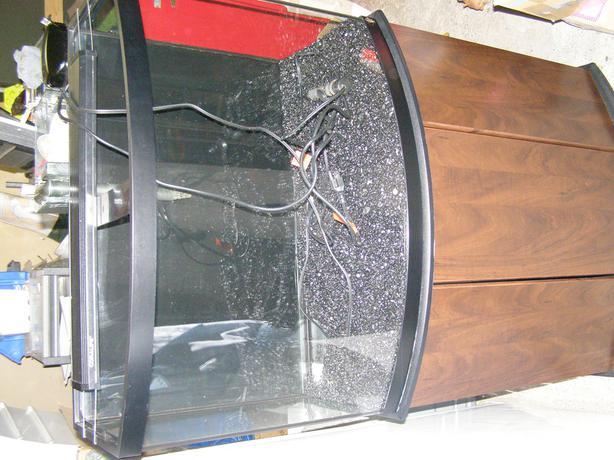 Aqueon 36 Gallon Bow Front Aquarium With Lots Of