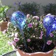 Plant Watering Globe Stakes (5 Sets of 2) Gifts Doorprizes Resale New
