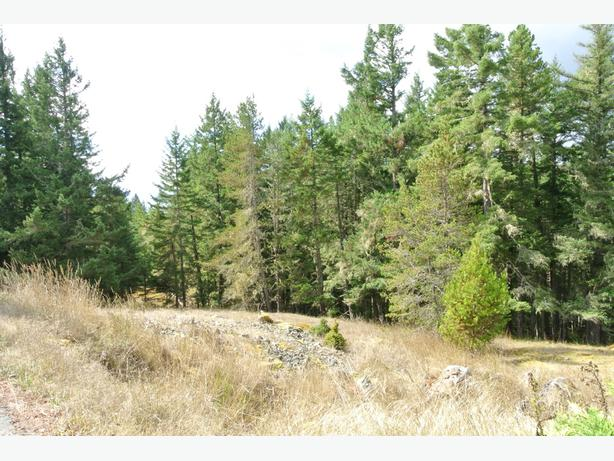 Build Your DREAM Home Here on 2 Acres! SW No GST
