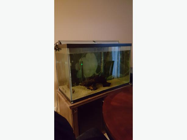 how to reseal a 150 gallon fish tank