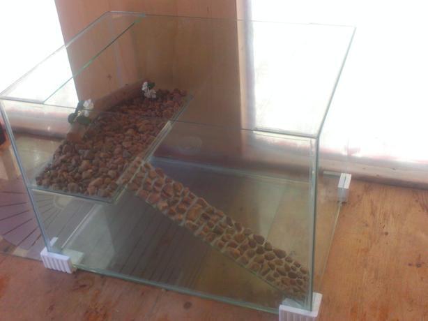 105 Gallon Turtle Tank