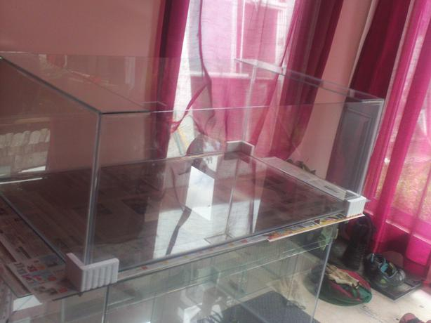 New 105 Gallon Terrarium with Screen Lid