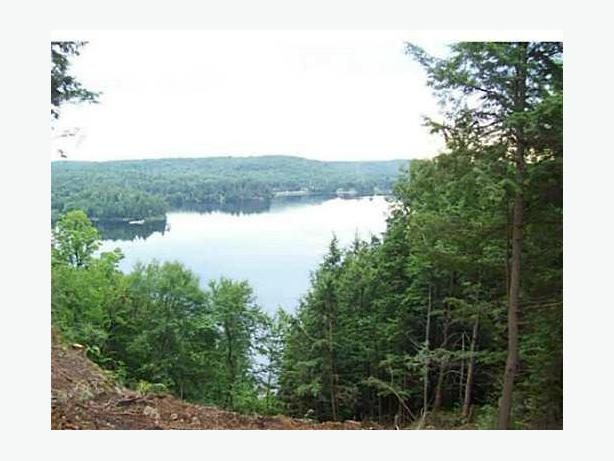 Lakefront Property Trout Lake Ontario 14 Building Lots