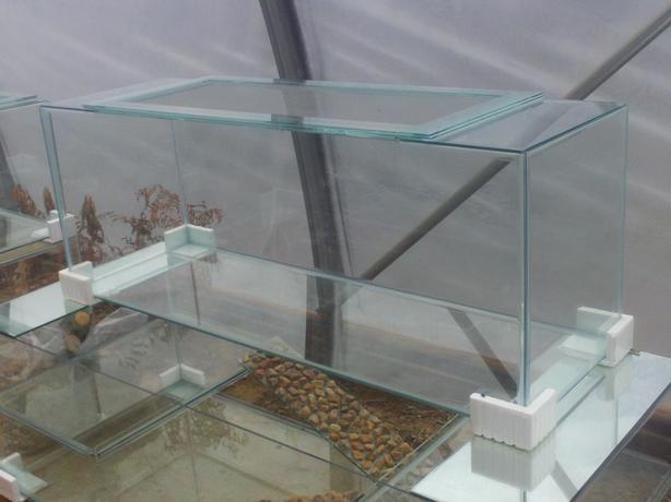 New 55 Gallon Terrarium