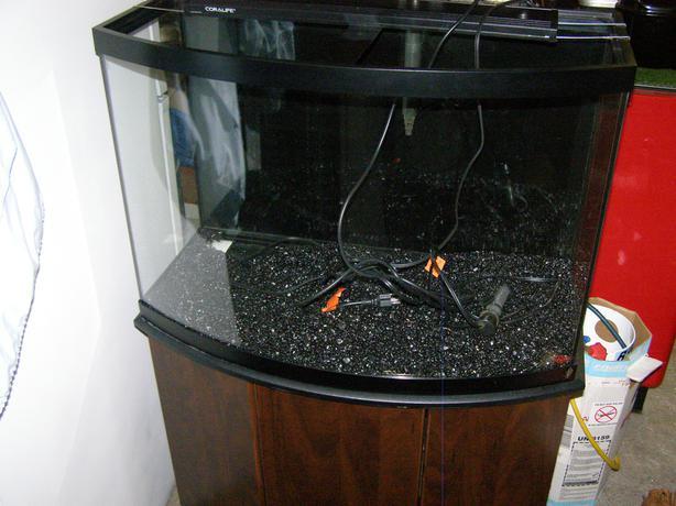 100 36 Bow Front Aquarium Stand Yasminroohi