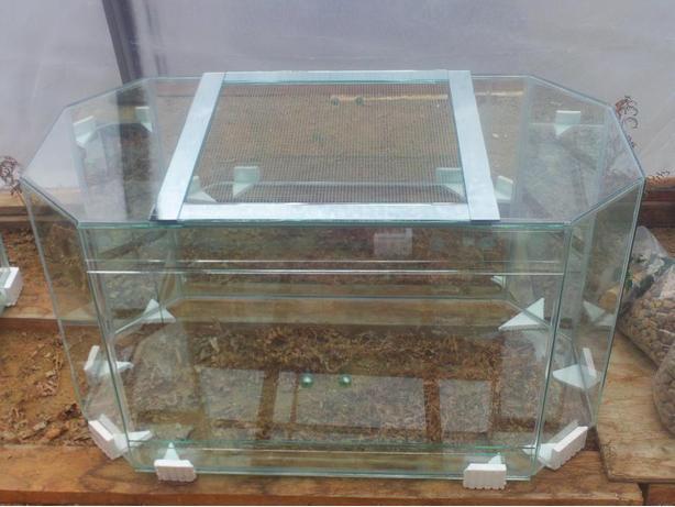 New 125 Gallon Terrarium