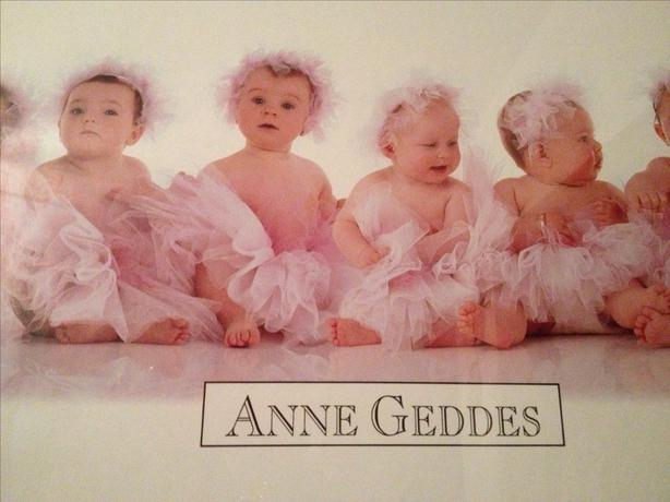 "Anne Geddes ""Babies in Pink"" Professionally Framed Wall Hanging (12"" x 36.25"")"