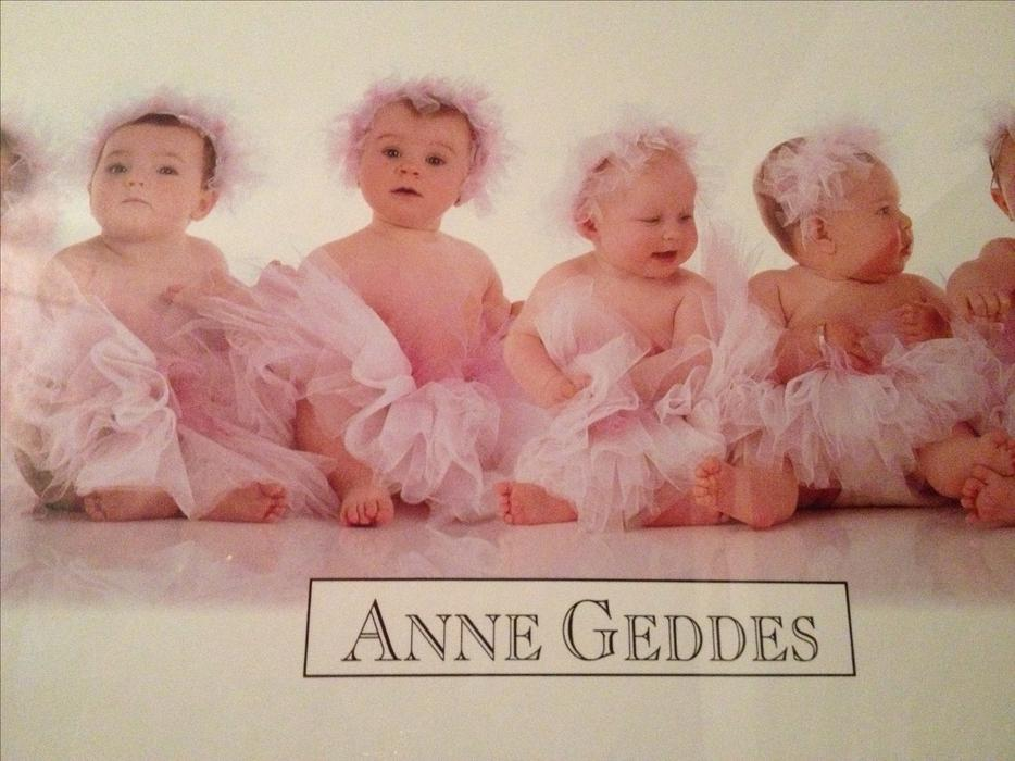 Anne Geddes Quot Babies In Pink Quot Professionally Framed Wall