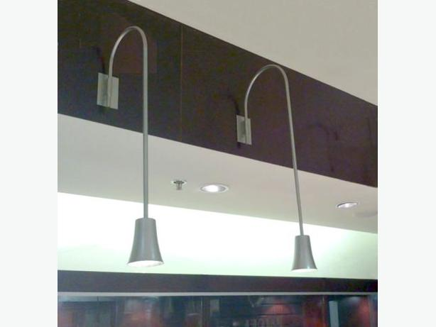 LAMPE COL DE CYGNE ~ GOOSENECK LAMP