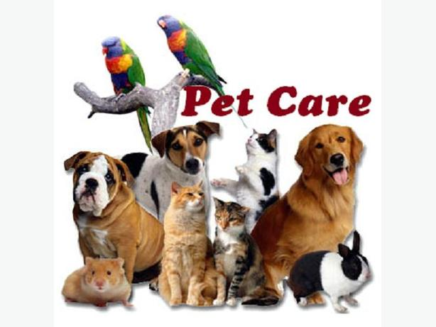 Loving Pet Care