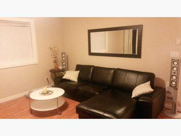 IKEA Loveseat And Chaise Lounge STRIND Coffee Table Malahat - Strind coffee table