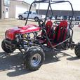 BRAND NEW KIDS/YOUTH 125 cc DUNE BUGGY/GO KART 2 SEATER ON SALE
